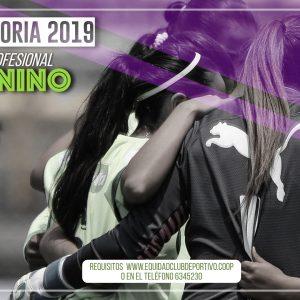 Convocatoria 2019: Equipo profesional femenino